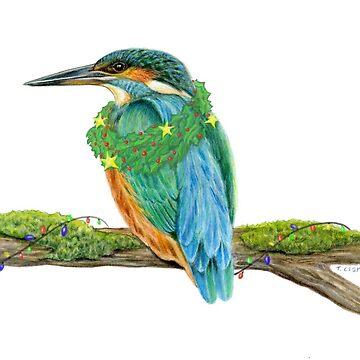 Holiday Kingfisher by edenart