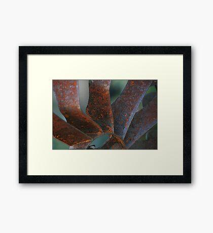 Windmuehle Framed Print