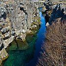 Þingvellir Water II by Matthias Keysermann