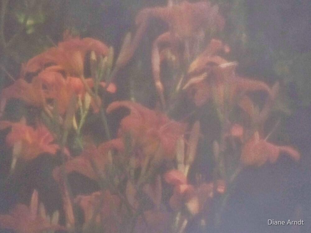 Lilies Through A Kitchen Curtain by Diane Arndt