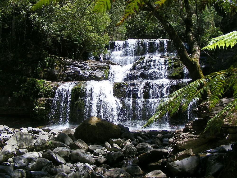 Liffey Falls (Tasmania) - visited again  by gaylene