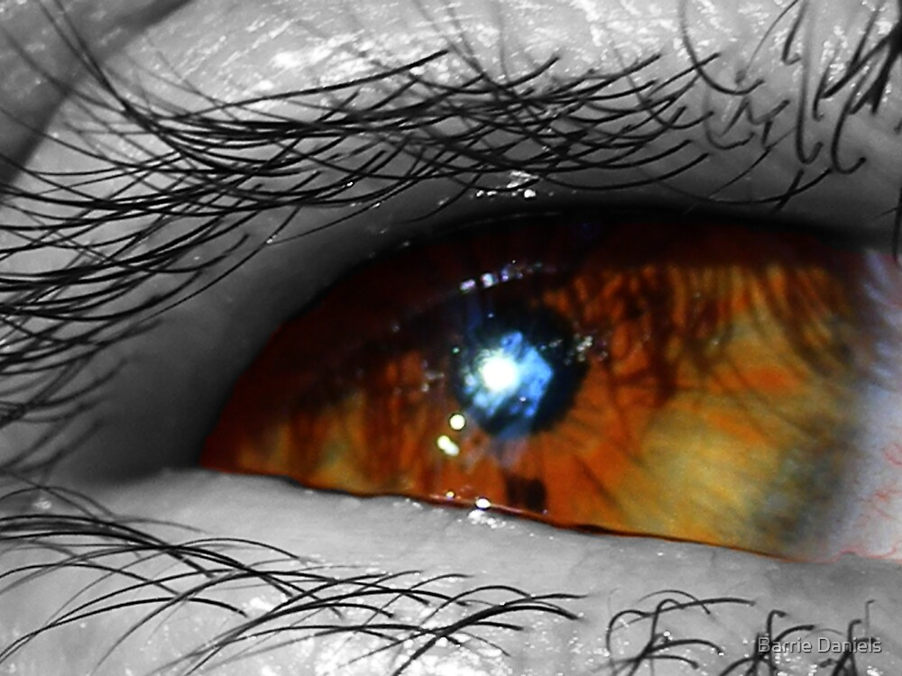 Hazel Eye by Barrie Daniels