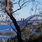 My City Of Sydney by StarKatz