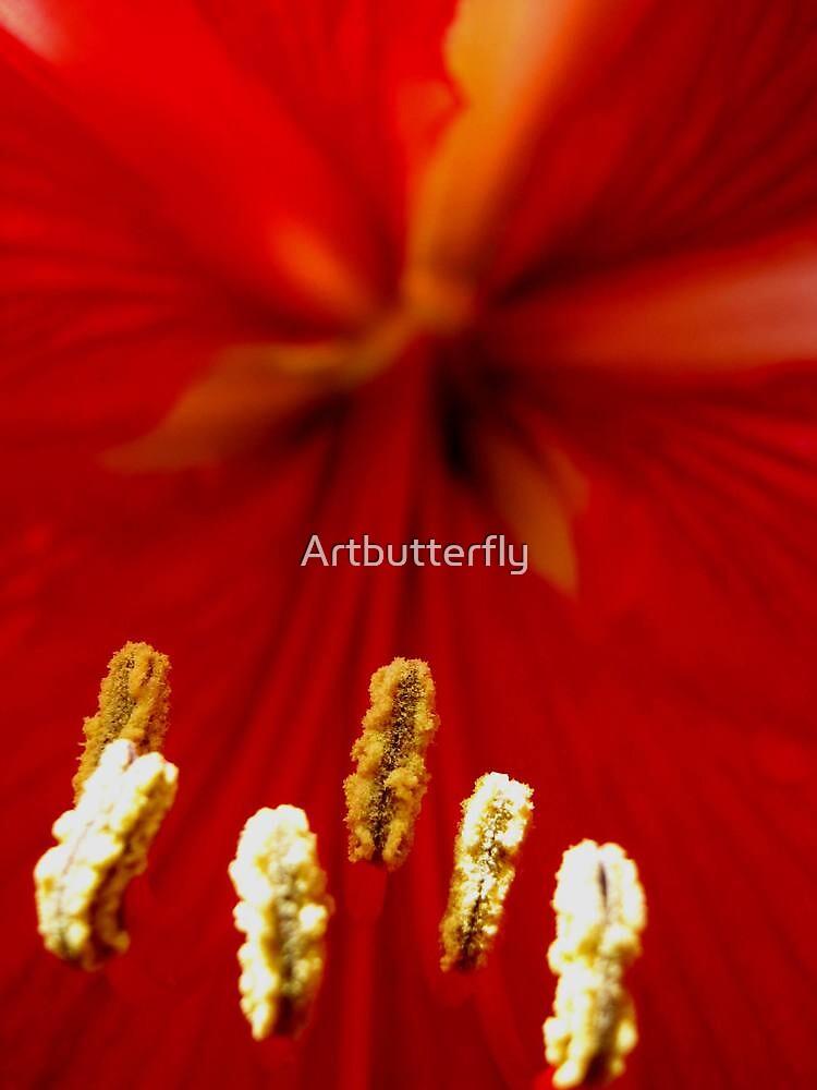 Red flower by Artbutterfly
