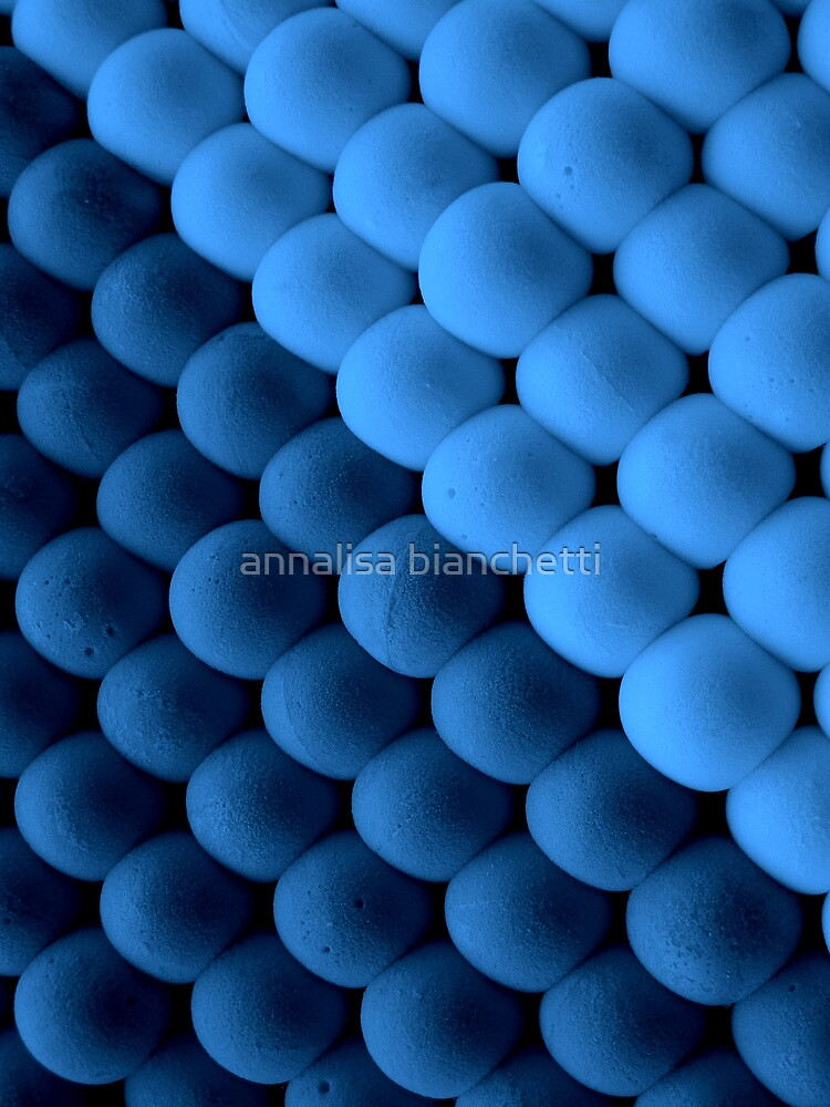 Blue balls by annalisa bianchetti