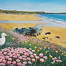 Seagulls and seapinks at Whitesands Bay by Jenny Urquhart