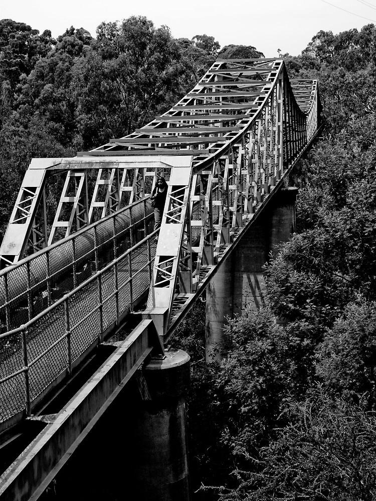 Yarra Bend - the Pipe Bridge by Mark Elshout