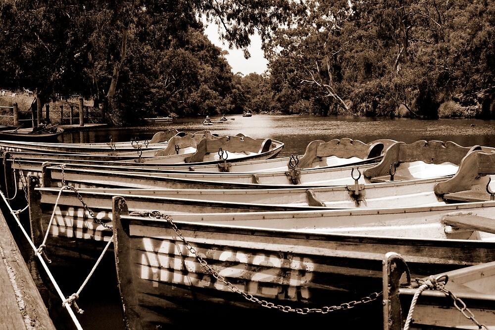 Yarra Bend - the boatshed #1 by Mark Elshout