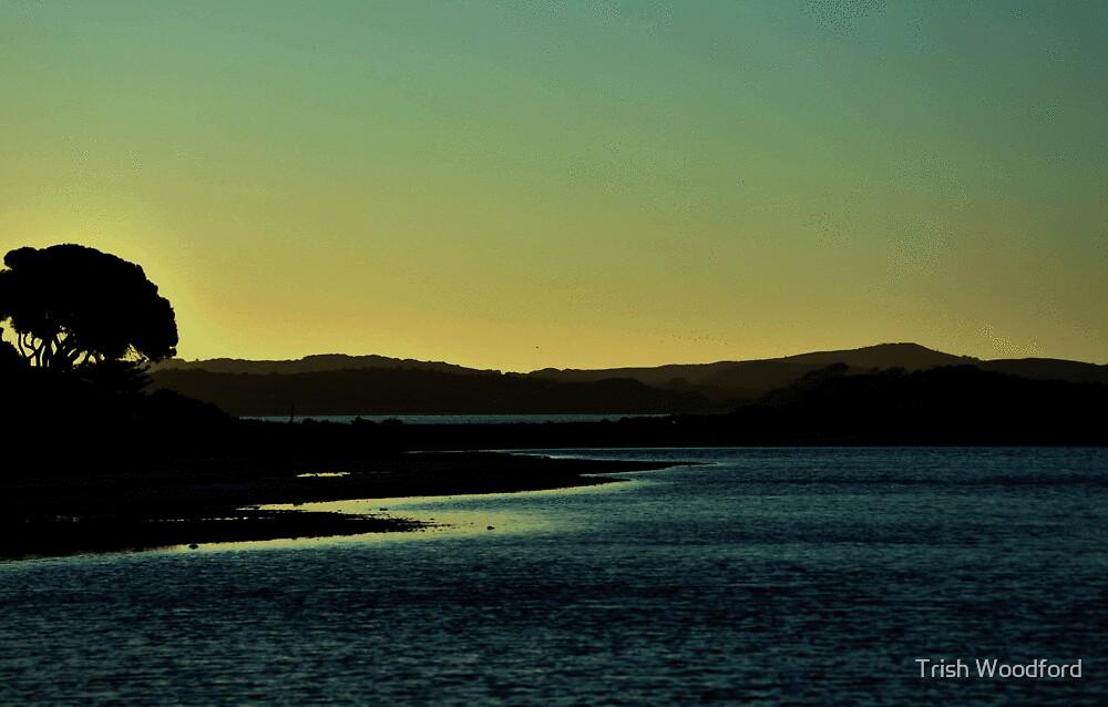 Salt Lake Serenity by Trish Woodford