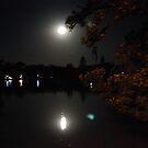 Moonlight at Lake Weeroona by Lozzar Flowers & Art