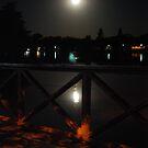 Full Moon at Lake Weeroona by Lozzar Flowers & Art