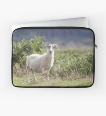 Summer Ewe (Cat Burton Photography) Laptop Sleeve