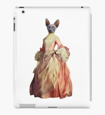 Miss Kitty iPad Case/Skin