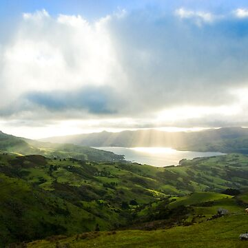 Rolling Hills - Banks Peninsula, New Zealand by mitton