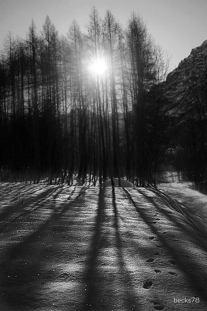 Light & Cold by becks78