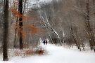 A Winter Walk by Elaine Manley