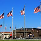 I Count 20 American Flags - Do You? by Cora Wandel