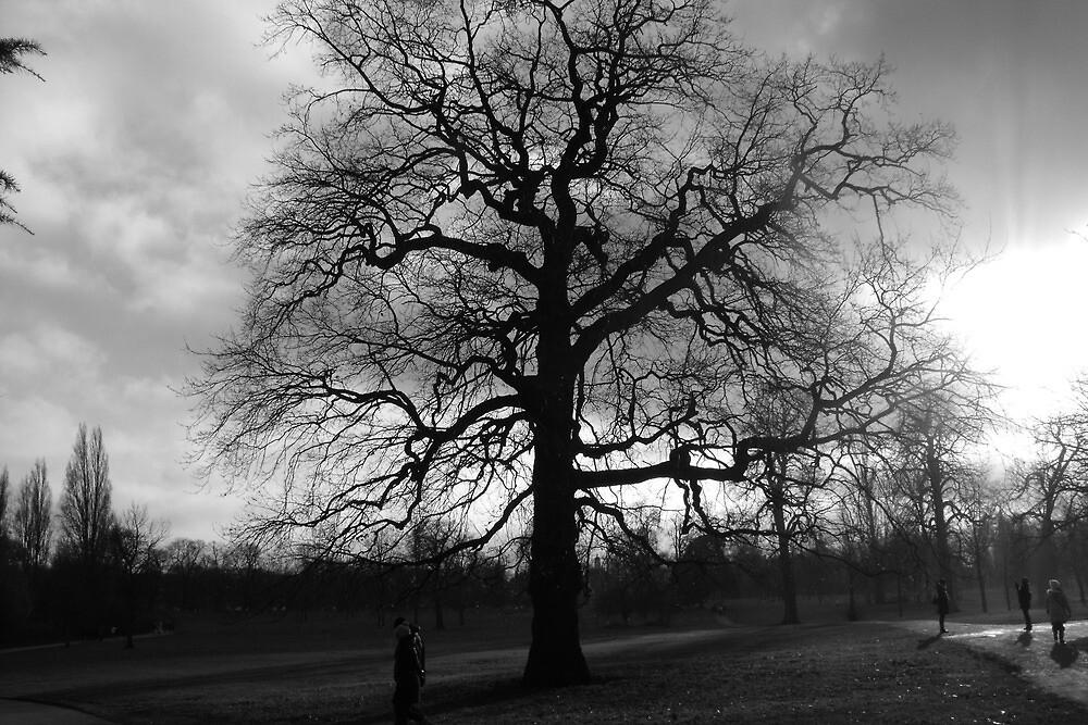tree by pjfry
