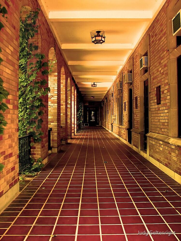 Walkway by Judy Seltenright