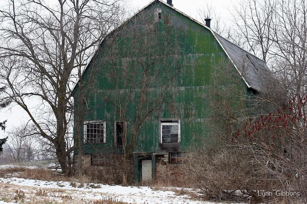 Green Barn by Lynn  Gibbons