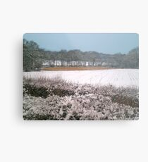 Snow-covered Metal Print