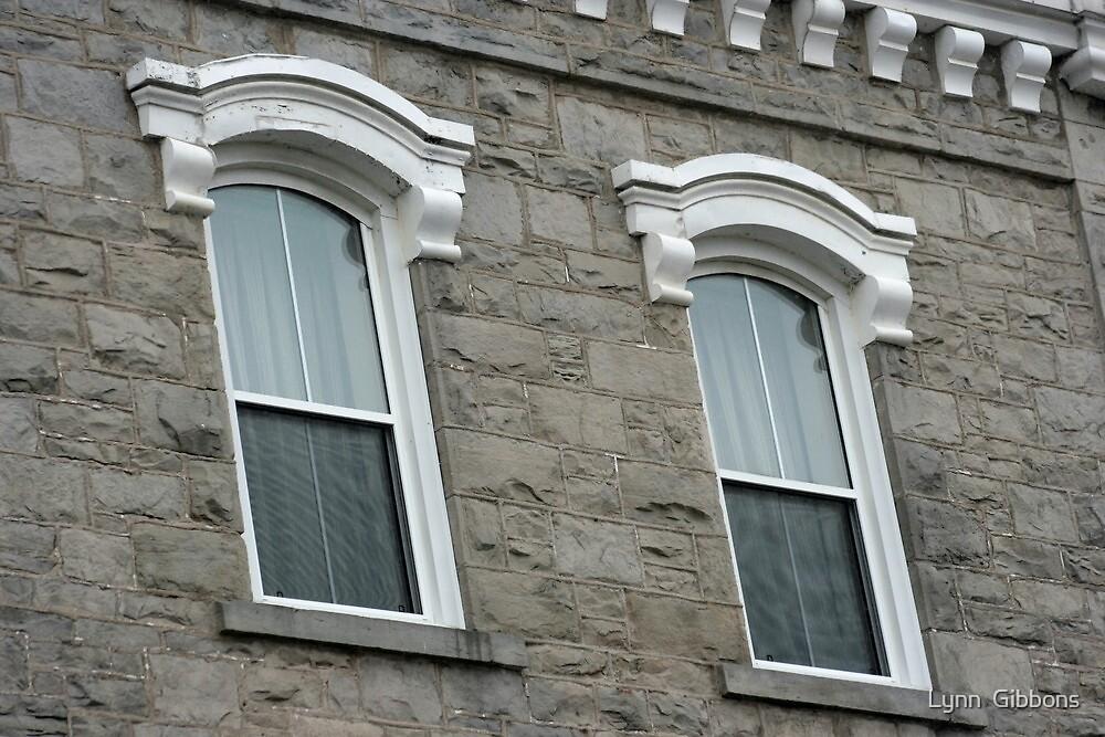 Windows by Lynn  Gibbons