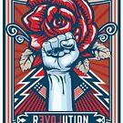 Revolution solution by Robert Cross