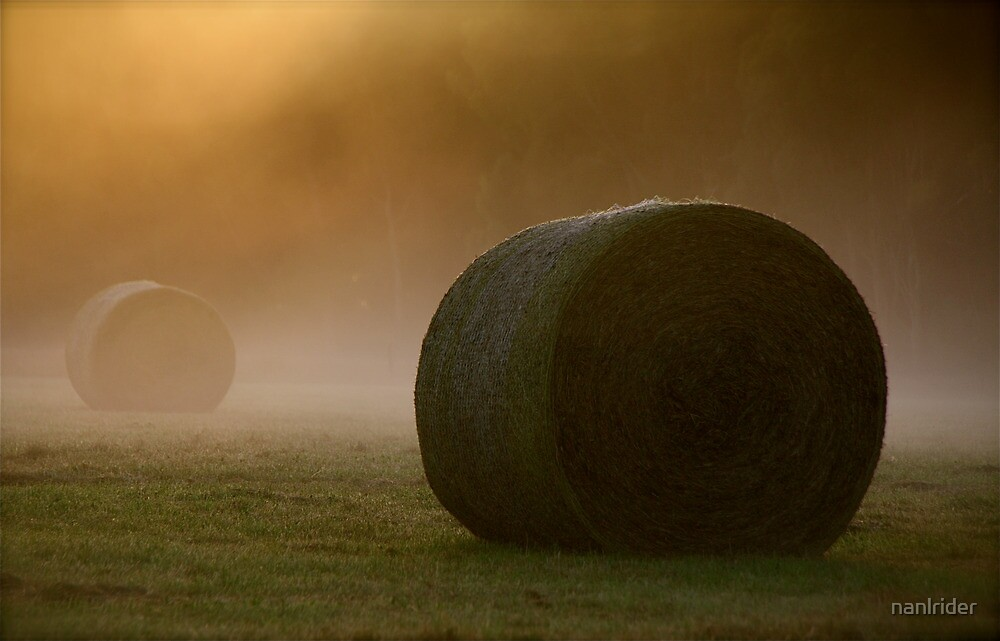 Morning Mist... by Nathaniel Arnold