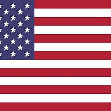 "The national flag of the United States of America -  Authentic 10:19 ""G-spec"" (for ""government specification"" ) Scale and colors by Bruiserstang"