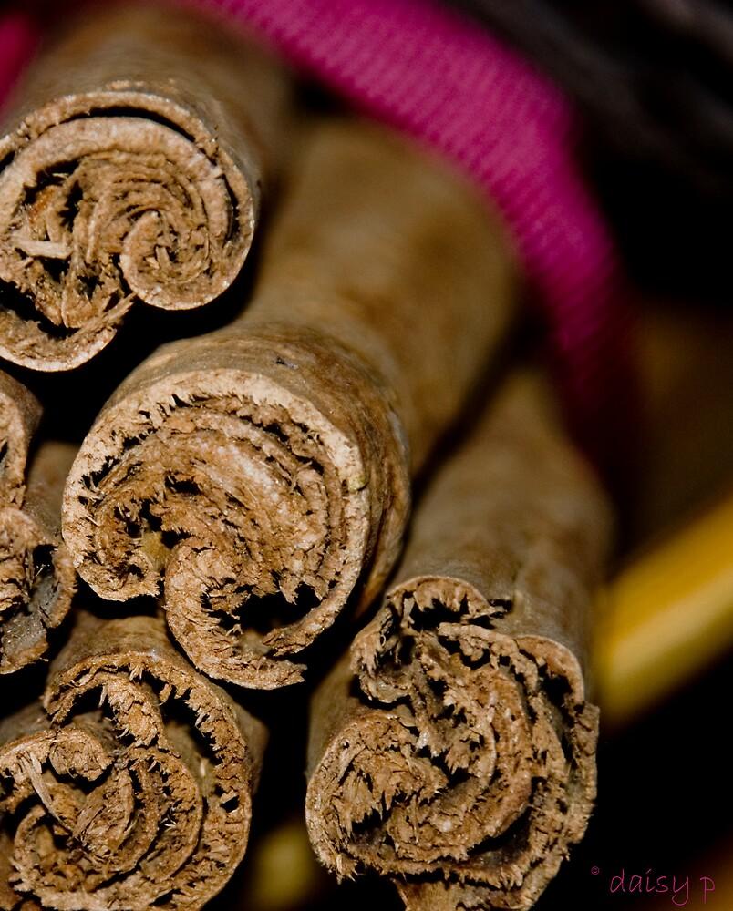 Cinnamon Ends by daisymae