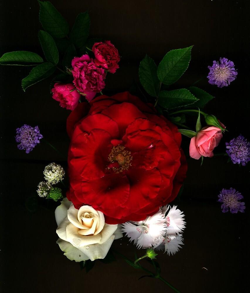 summer bouquet by Deb Ketchum