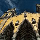 Cathedral of Immaculate Conception by Appel
