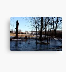 Icy Landscape Of A Yard! 09 Canvas Print