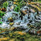Creek Waterfall by Joe Lach