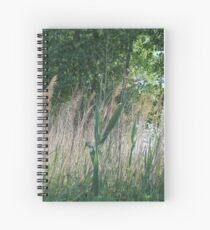 #nature #grass #landscape #outdoors #leaf #summer #wood #environment #tree #field #bright #season #horizontal #plant #nopeople #ruralscene #nonurbanscene #day Spiral Notebook