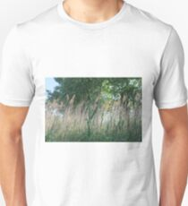 #nature #grass #landscape #outdoors #leaf #summer #wood #environment #tree #field #bright #season #horizontal #plant #nopeople #ruralscene #nonurbanscene #day Unisex T-Shirt
