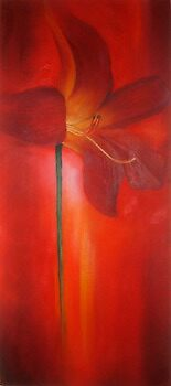 Red Lily by leilazarus