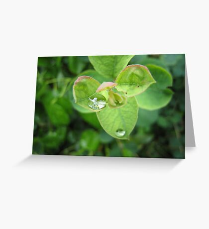 A little top heavy? Greeting Card