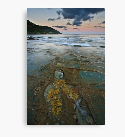Pavement at Wye River Canvas Print