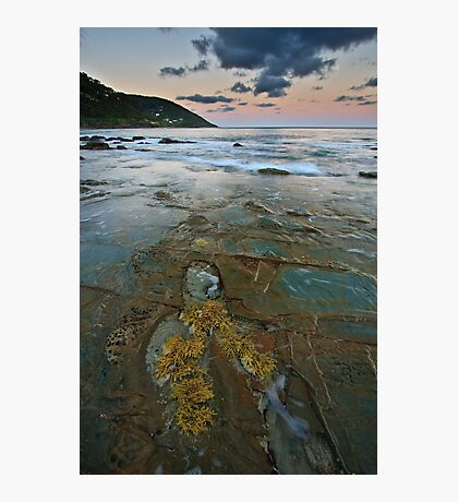 Pavement at Wye River Photographic Print