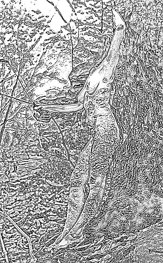 Treewoman 1 by Karin Ward