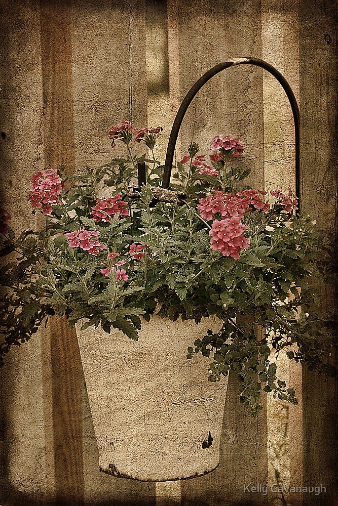 Potted Garden by Kelly Cavanaugh