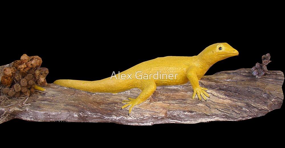 Lizard on log by Alex Gardiner