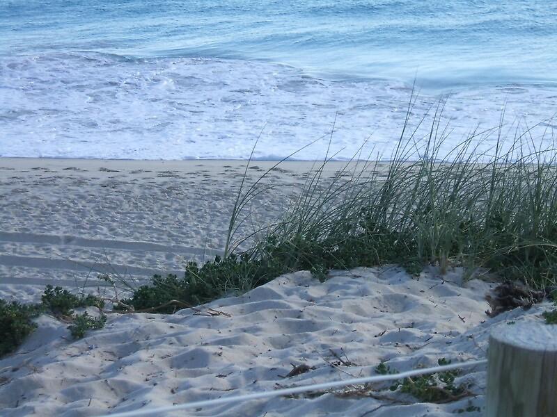 Sand dunes by Wildflower7777