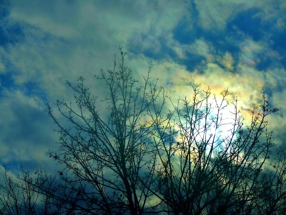 December Sky; Part Seven by NevadaCaitlyn