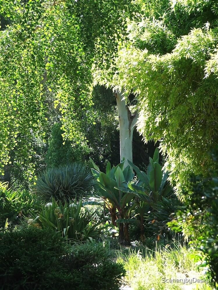 Botanic Gardens 1 by ScenerybyDesign