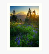 Mount Rainier Sunburst Art Print
