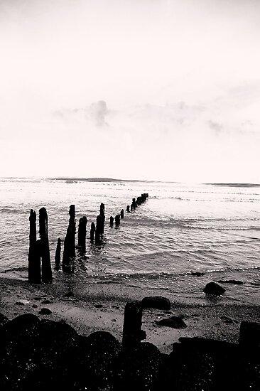 Sea Defence - Sandsend by Trevor Kersley