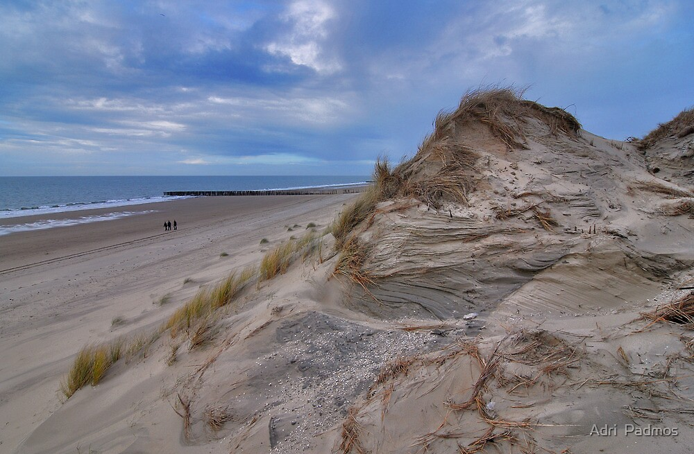 Dune and beach 4 by Adri  Padmos