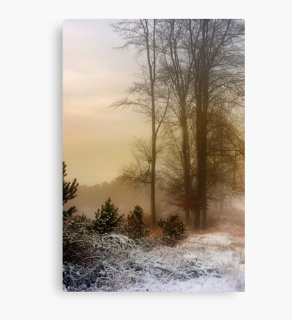 Christmas Eve in the Snow Canvas Print